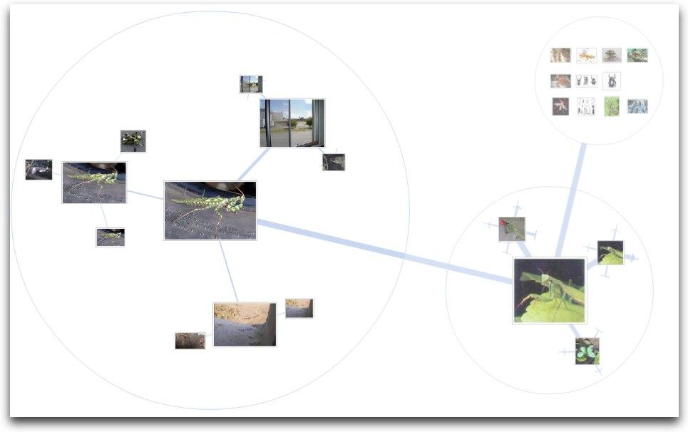 Google Image Swirl